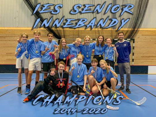 IES Senior Innebandy tournament